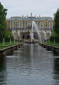 pic of samson  - Royal palace and fountains in Peterhof Saint Petersburg Russia - JPG