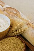 Bread, Wheat And Wheat Germ Demonstrate Wheat Allergens Or Delicious Food