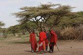 A Group Maasai Men Under Tree Divide Money.