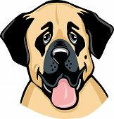 Anatolian shepherd dog cartoon