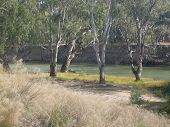 By the Edwards River, Deniliquin, NSW Australia