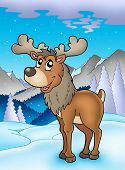 foto of cariboo  - Winter theme with happy reindeer  - JPG