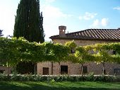 Wisteria And Tuscan Castle Outbuilding