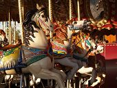 Row of horses on a merry go round