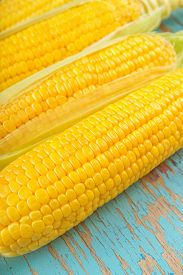 foto of corn cob close-up  - Freshly picked raw corn cob sweet ear of maize on rustic blue wood background close up image selective focus with shallow depth of field - JPG