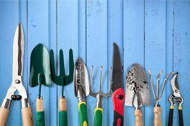 pic of prunes  - Gardening Equipment Gardening Work Tool Pruning White Pruning Shears Equipment - JPG