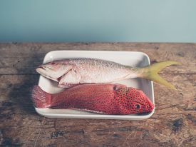 foto of red snapper  - Two colorful exotic fish placed in a tray a red butterfish and a Carribean snapper - JPG