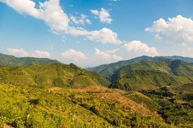 picture of denude  - Decimated deforestation area on some mountains in Laos - JPG