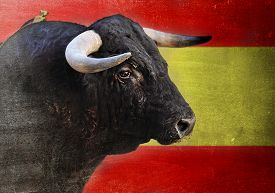 pic of bullfighting  - bull head with big sharp horns looking dangerous and scary isolated with Spain flag grunge and dirty edited background in Spanish Fiesta and bullfight concept - JPG