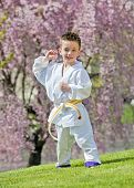 stock photo of jiujitsu  - Young boy practicing martial arts outside in spring - JPG