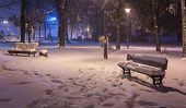 Winter Night Landscape- Bench Under Trees And Shining Street Lights Falling Snowflakes. poster
