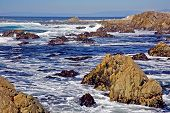 17 Mile Drive Seascape