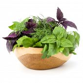 Fresh spices and herbs in wicker basket isolated on white background cutout. Sweet basil, red basil  poster