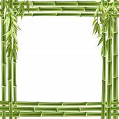 Marco de bambú. Fondo de Vector