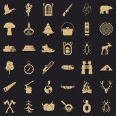 Fir Tree Icons Set. Simple Style Of 36 Fir Tree Vector Icons For Web For Any Design poster
