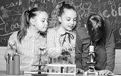 Little Kids Scientist Earning Chemistry In School Lab. Little Children. Science. Chemistry Science.  poster