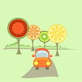 A Car And Fruit-like Trees