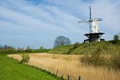 picture of veer  - Mill in Veere The Netherland on a dyke - JPG
