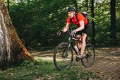 Mountain Biker Riding On Bike In Spring Inspirational Forest Landscape. Man Cycling Mtb On Enduro Tr poster