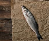 Fresh Whole Sea Bass Fish On Brown Crumpled Paper, Top View, Copy Space poster