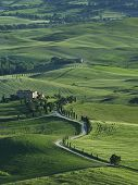 Idyllic Landscape Of Rural Area Of Tuscany, Italy poster