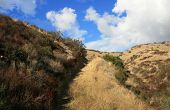 Coyote Trail Ascent