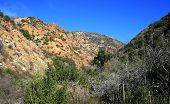 Harding Canyon Back Country