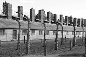 Barracks at Auschwitz Concentration Camp