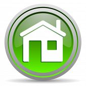home green glossy icon on white background