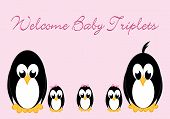 Постер, плакат: Добро пожаловать Baby пингвины трехместные номера