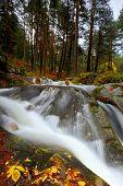 Nature Park in Segovia
