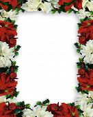 Christmas Border Frame Poinsettias Garland