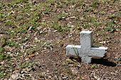 Buried Cross
