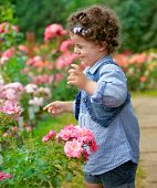 Baby Girl In Rose Garden