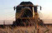 Combine Removes Wheat Warm Summer Evening