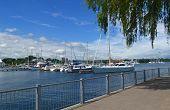 Yacht Harbour.