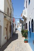 pic of asilah  - Narrow street in Asilah Morocco - JPG