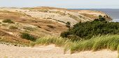 View From The Dune Nagliu, Curonian Spit, Lithuania