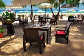 image of beautiful flower  - Table chairs and umbrellas at the beach - JPG