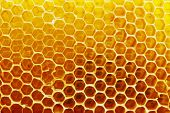 Bright yellow honeycomb