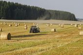 Harvesting Of Wheat Straw