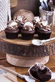 Chocolate Cupcake With Marshmallow