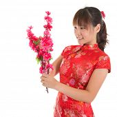 Asian woman with Chinese traditional dress cheongsam or qipao holding plum blossom flower for decora