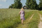 Walking woman in a straw hat among a field of rye
