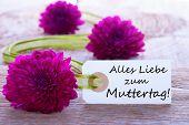 Label With Alles Liebe Zum Muttertag