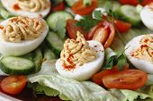 Homemade deviled eggs served on a salad of miniature tomatoes, lettuce, sliced cucumber and chopped