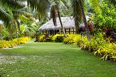 A Fijian bure along a lush, tropical beach surrounded by palm trees, green grass and many plants.