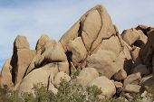 Joshua Tree National Park Rocky Landscape