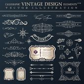 Vector set vintage ornate. Calligraphic design elements and page decoration, collection with royal o