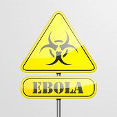 detailed illustration of a ebola warning roadsign, eps10 vector